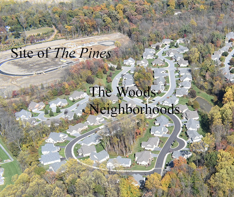 Aerial view of the stand alone houses in The Pine neighborhood with text that says
